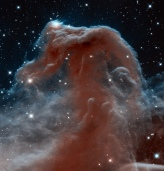Hubble Sees a Horsehead of a Different Color
